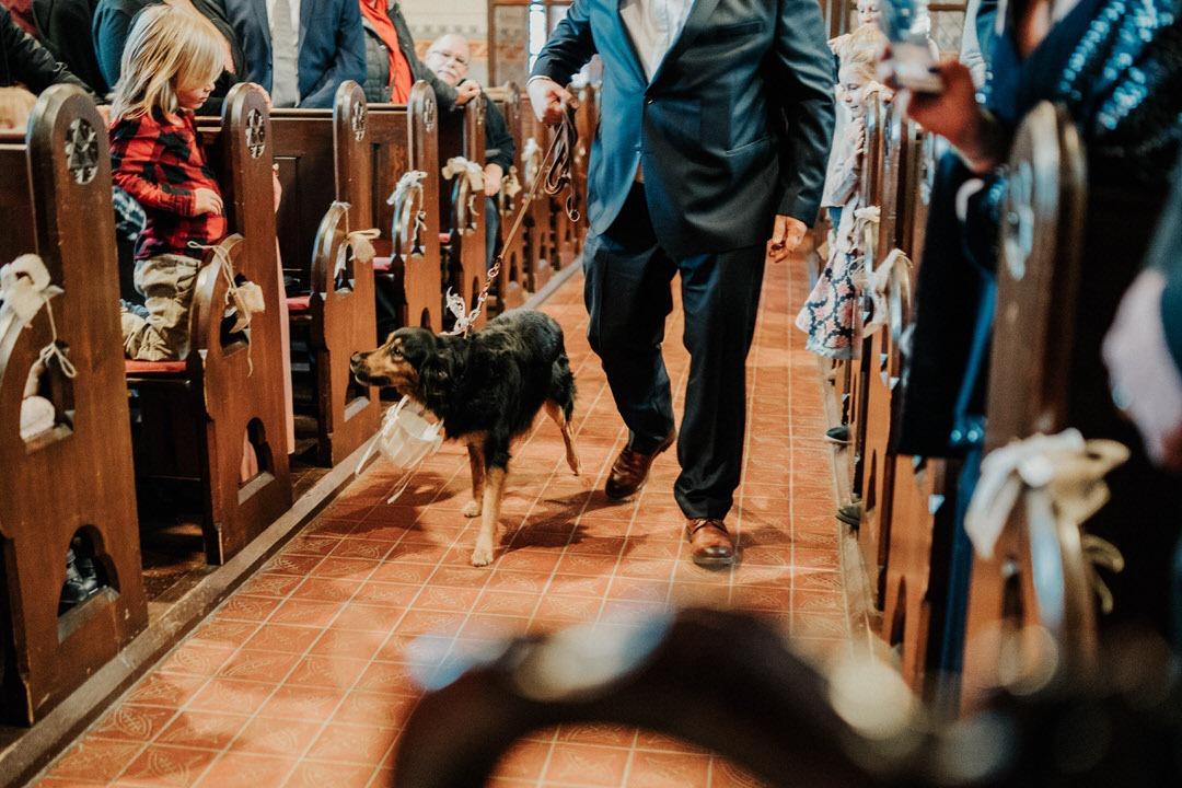 Hochzeitsideen Hund als Ringträger