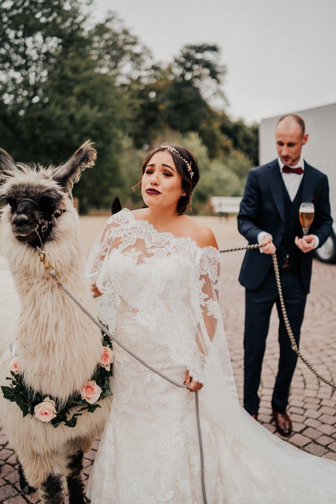 Boho-Braut mit Lama bei der Hochzeitsreportage in Wiesbaden, Hochzeitsfotograf für Storytelling aus Hessen